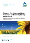 European Regulatory and Market Framework for Electricity Storage Infrastructure
