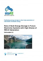 Role of Bulk Energy Storage in Future Electricity Systems with High Shares of RES-E Generation
