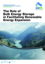 The Role of Bulk Energy Storage in Facilitating Renewable Energy Expansion