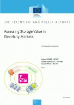 Assessing Storage Value in Electricity Markets