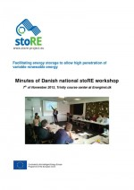 Proceedings of the National Workshop in Denmark