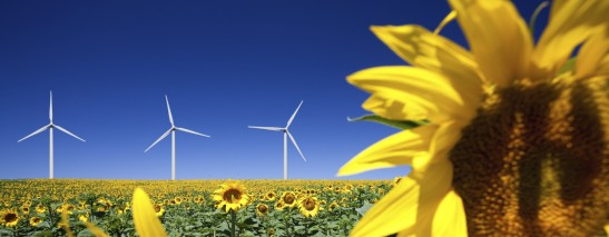 Wind energy will more than double in the period 2010 to 2030 supplying about 30% of the EU electricity